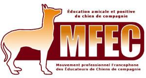 Logo MFEC